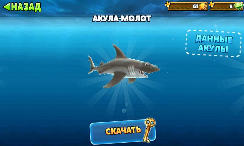 Trecerea rechinilor foame. Ghid pentru trecerea Lumii rechinilor foame